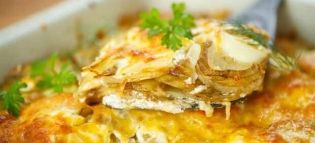 картошка в духовке с сыром и майонезом